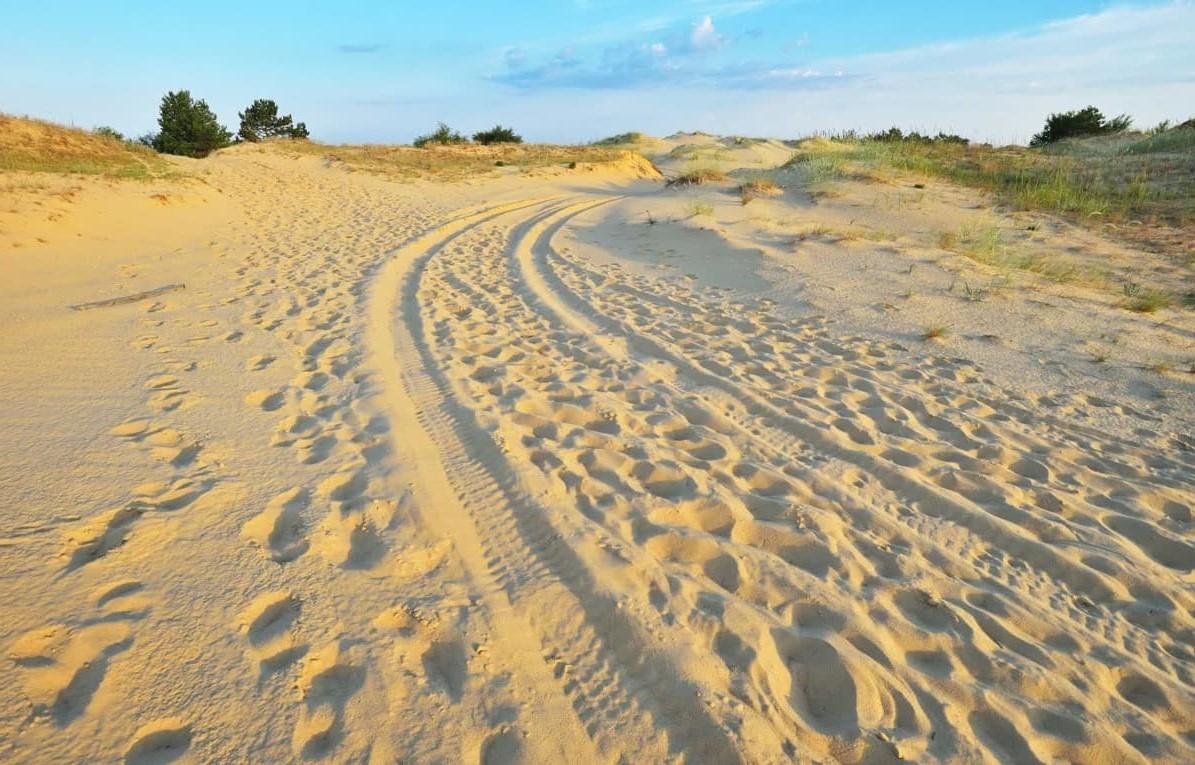 Эко-тропа «Олешківскі піски